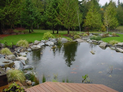 Ponds Large Water Features Erin Rockery Construction