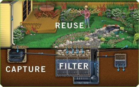 RainXChange:  Capture, Filter and Reuse Rainwater!